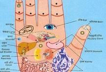 Fit, meditation & migraines  / by Karen J.