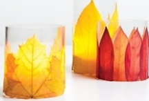 Fall Favorites / by PlanetReuse Marketplace