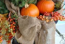 Autumn Fall LOVE / by Teresa Wilkes