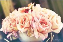 flowers / by Mari Crea