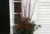 Holiday Decorating / by Patty Givner