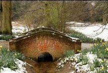 Wiltshire , uk etc,etc. / by Carol Coates