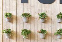 Tuinideeën // Gardening ideas / Ideeën voor in de tuin // Ideas for your garden / by Tuinieren.nl