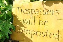 Crop Garden / Gardening tips, tricks, and ideas. / by Sarah Jordan