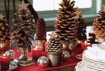 4. Pine Cones / Ideas with Pine Cones / by Christmas Trees