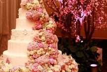 Cakes and cupcakes / by Rumina