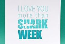 Shark Week / Everything you need  when it comes to Shark Week / by Seagram's Escapes