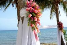 Beach Vow Renewal / by Rachel Lucas