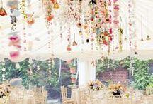 Weddings / by Sofi Budinich
