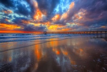 Reflections / by Dale