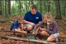 Explore and Get Outdoors  / by National Wildlife Federation