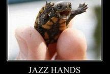 Funny / I LOVE TO LAUGH!!! :) / by Ebony McSwain