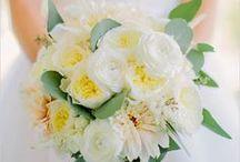 {Wedding} Floral Designs / by Maggie McAllister