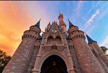 Destination Disney / Traveling to the happiest place on Earth! / by Jennifer Graber
