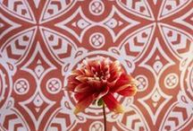 coral home decor / Coral,  terra cotta, tangerine, peach, rust, orange, melon, persimmon room style & decor / by Mary Clare