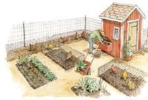 Gardening/Farming / by Lacey Thomas