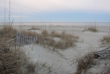 Beaches of the Southeast / by Elaine Reese