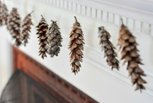 Winter/Christmas  / by Lacey Thomas