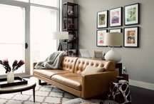 Dreamed Up Apartment Decor  / Ideas for decorating my apartment, things I want to buy and things I already have! / by Caitlin Cody