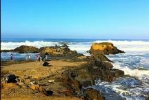 Beaches / by Maiden Jane