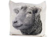 Pillows / by anakim jewelry