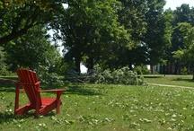 Wind Storm (July 2012) / Photos around the Lynchburg College campus after the wind storm. / by Lynchburg College