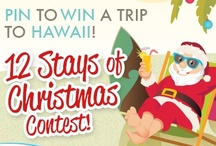 12 Stays of Christmas / Show us your dream Christmas in Hawaii on Pinterest and you could win a trip to Hawaii for 2 from Aqua Hotels & Resorts!! www.12staysofchristmas.com / by Aqua Hotels & Resorts
