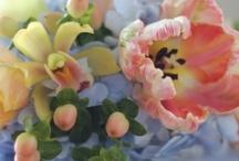Floral / by Karen Warnke