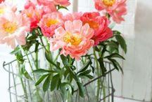 Flower power / by Pauline Bfd