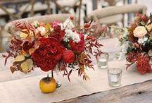 Fall Weddings / by Social Butterfly