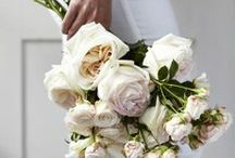 Flowers / by Kimberley Brookfield