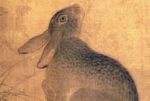Rabbits / by Noriko Kitahara