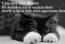 Meow - Cat Quotes / by Rebecca
