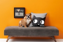 Posh Pets / by Gilt Home