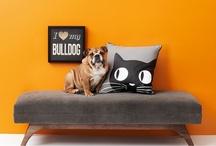 Posh Pets / by Gilt Home