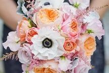 Beautiful Blooms / Flowers to complement beautiful wedding style / by Little White Dress Bridal Shop