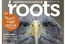 Birds / by Roots Magazine