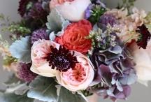 (someday) wedding ideas / by Katelyn Williams
