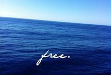 ETERNAL SUNSHINE / surf, sea, sand, sun / by Serena Goh