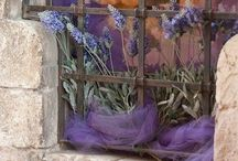 Love Provence / by Josie Connors
