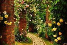 The Secret Garden / by Josie Connors