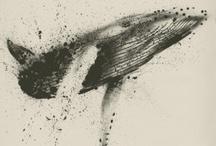.love whales. / by Jessie
