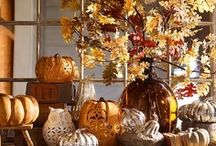 Fall Decorations / by Cathy Ratley