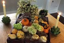 Fall fabulosity / The time for autumn leaves and roasting turkey / by Emily Spicer
