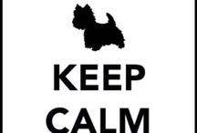 Keep Calm and ... / by Donna SewAmazin