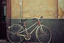 bicycles / by Rachel C.