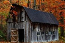 Go to the country and build us a home or a BARN / good home grown country living, a place for my favorite barn quilts / by Noel Desurne