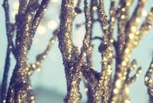 celebrate.  winter. / by Travetta Johnson