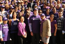 Advocacy / by Alzheimer's Association, NYC Chapter