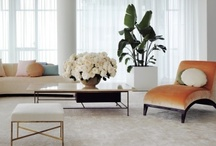 Lovely Spaces / by Lauren Gould